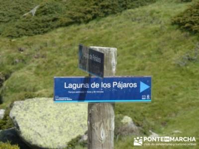 Ruta senderismo Peñalara - Parque Natural de Peñalara - Laguna de los Pajaros;